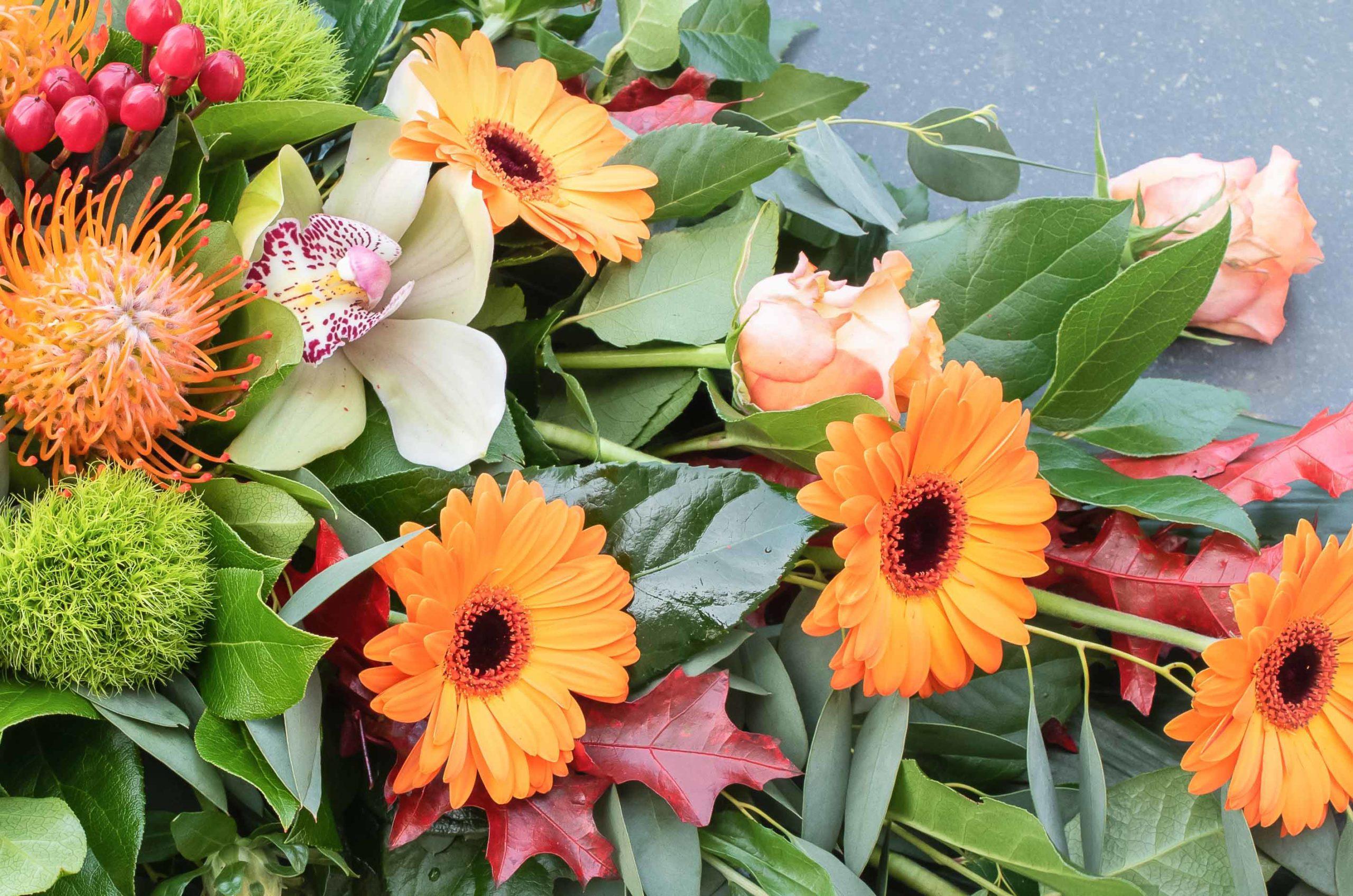 Fleurs en Fête, Fêtes des Fleurs